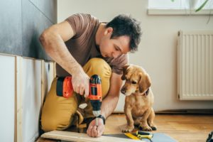 man installing a wood with his dog behind him