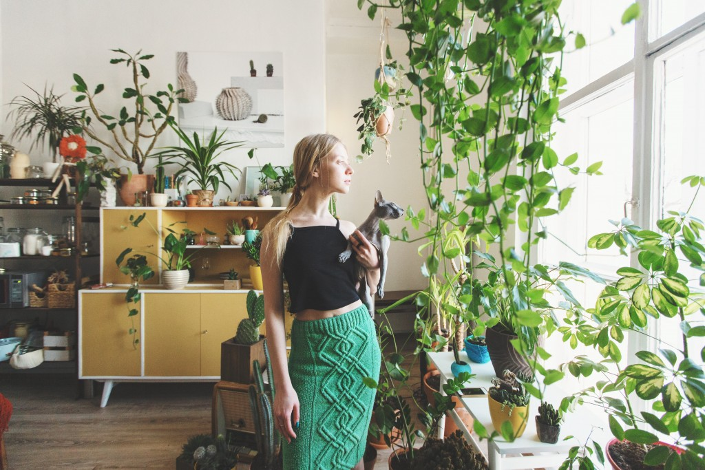 a home with a lot of plants