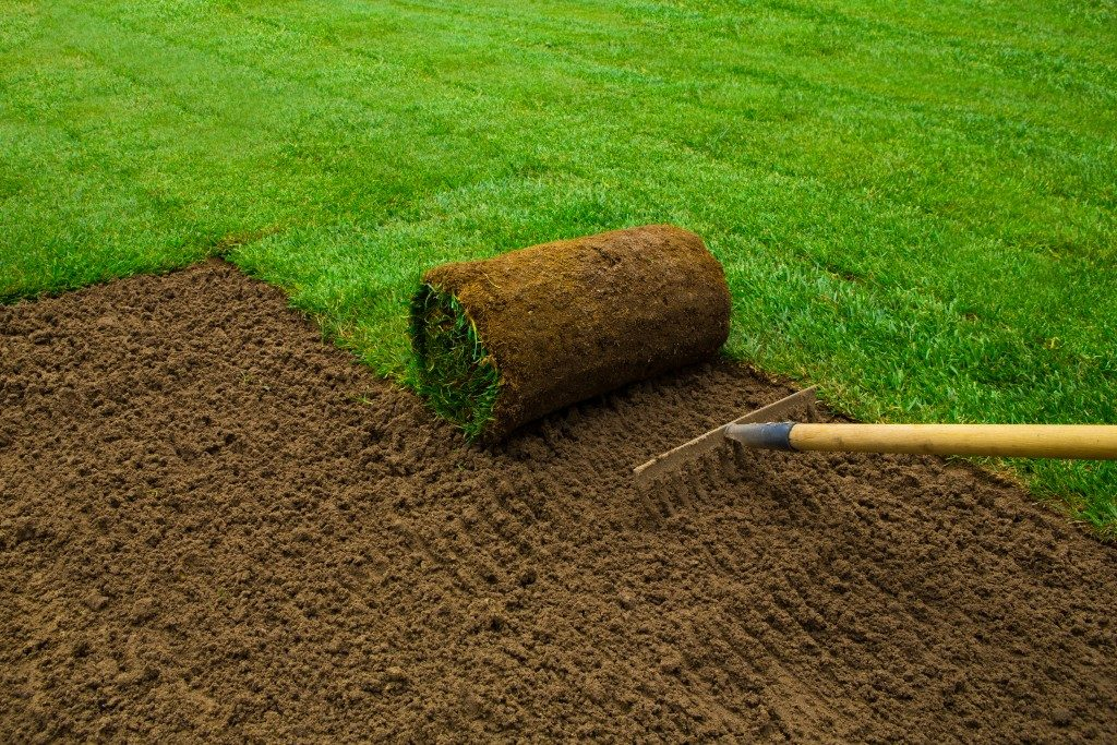 turf grass being placed in a yard