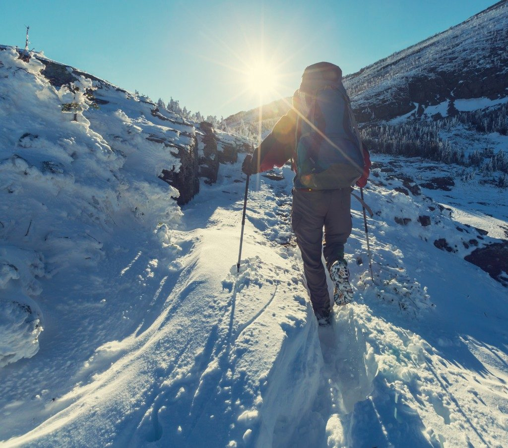 Hike in Glacier National Park, Montana