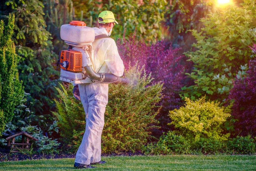Pest Control Garden Spraying by Professional Gardener Who Wearing Safety Wearing