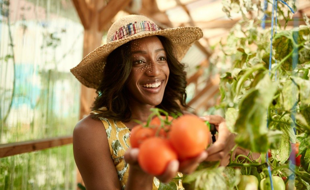 woman with garden tomatoes