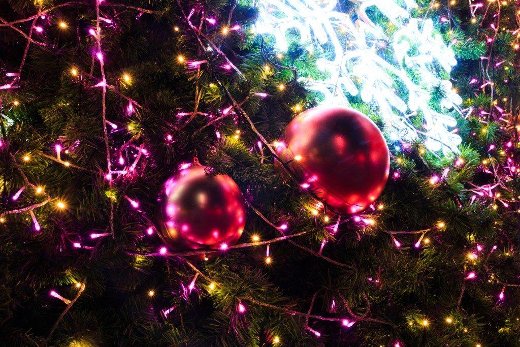 closeup of christmas lights and decor on a tree